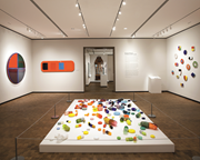 Beverly Fishman: In Sickness and in Health , <b>installation</b> view, 2015–16. Ch...
