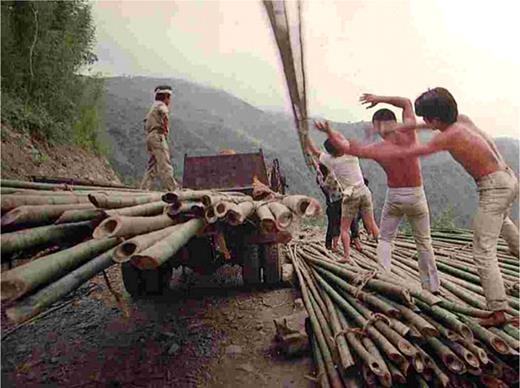 The reassembled car for shipping bamboo at Jenshi, a mountainous area in Shinchu County, in the 1970s. Photo cited from Chiu-Chen Lian (1981, p. 86)