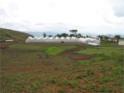 A new hydroponic greenhouse and nursery heralds the beginnings of industrial agriculture in East Timor.
