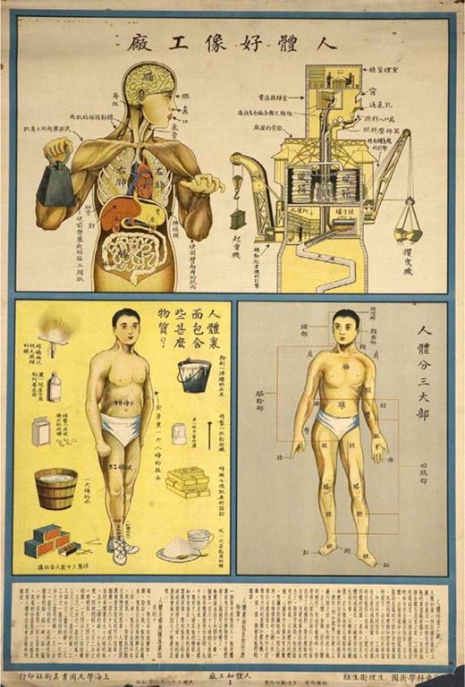 Human body as machine (Shanghai, 1933)