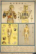 <b>Human</b> body as machine (Shanghai, 1933)   Fig. 1. <b>Human</b> body as machine (Sha...