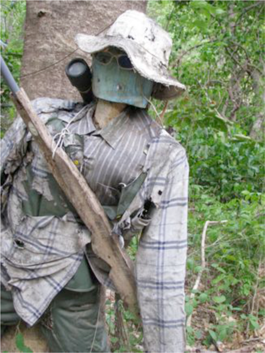 Duck hunting, the world making game of powerful foreigners, is illegal in Costa Rica. Some farmers of Bagatzí have become poachers, intruding onto the government nature preserve in Palo Verde managed by conservation biologists. This mannequin with a wooden 'gun' was installed by park guards on one of the dirt roads crisscrossing the national park. Guards made mimetic copies of themselves, aiming to startle intruders with uncanny specters (Photograph: Eben Kirksey)