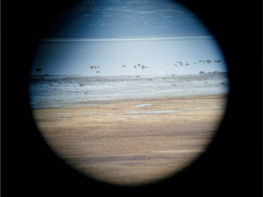 Binocular view of the Valdak marshes. Photo by the author.