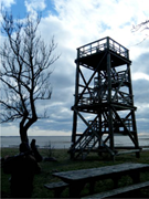 <b>Bird</b> tower at dawn, Estonia. Photo by the author.    Figure3. <b>Bird</b> tower at...