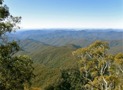 New England National Park from Point Lookout, 13 August 2008. The rugged Allan's Water district is on a plateau to the left. Photo by Neville Fenton.