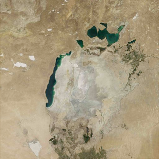 "The Aral sea, once the fourth largest lake in the world, has shrunk by 90% and is now a graveyard of ships. Photograph ""The Aral Sea Loses Its Eastern Lobe."" NASA Earth Observatory, September 26, 2014."