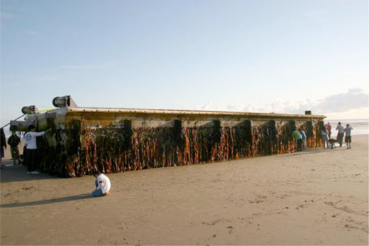 The Agate Beach tsunami dock. Photo: Oregon Parks and Recreation Department.