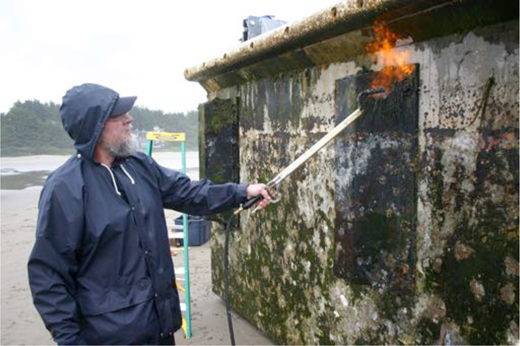 A member of the eradication team uses a propane torch to sterilize the dock. Photo: Oregon Parks and Recreation Department.