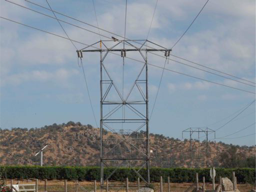 A red-tailed hawk landing on one of the Big Creek transmission towers near Sanger, California. Photograph by author.