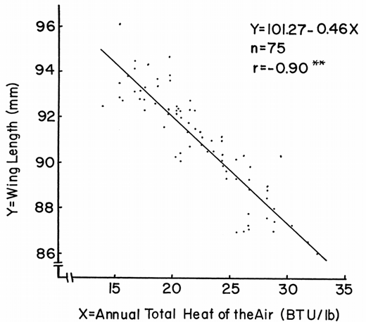 A line graph from James (1970) depicting a linear regression of Downy Woodpecker wing lengths (y-axis) and air temperature (x-axis).
