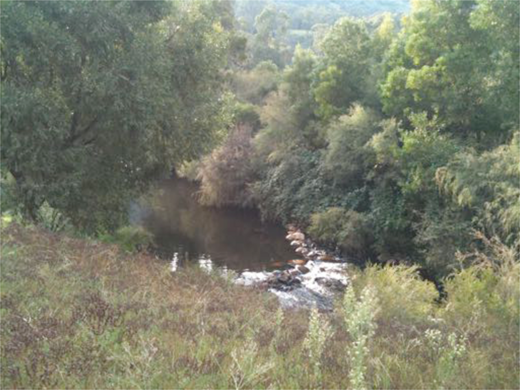 Watching Micalong Creek from the verandah. Image courtesy of Affrica Taylor