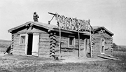 <b>Arikara</b> woman drying corn on top of house, Fort Berthold, ca. 1920. Courtes...