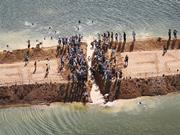 """Pare Belo Monte,""  New <b>York</b> Times Sunday Review , June 30, 2012. Amazon Wa..."