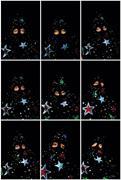 Starman: Nine States , 2009. Digital photographs; variable sizes. <b>Courtesy</b> ...