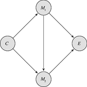 Mediators on the paths linking <b>cause</b> C and effect E   Figure 2. Mediators ...