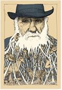 Darwin's ultimate interest, according to <b>David</b> Loye, was in the evolution o...