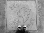 Owen Ross  Sidewalk art in the Juarez Valley raises a <b>call</b> for peace in a r...