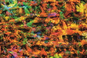Even the smallest microbes shape our <b>lives</b> as part of the <b>living</b> environmen...