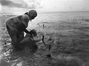 A <b>member</b> of women's collective Faruhia wanawake harvests seaweed at their f...